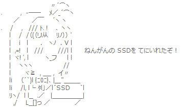 ねんがんの SSDを てにいれたぞ